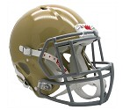 CASCO RIDDELL FOOTBALL FOUNDATION HIGH GLOSS XL
